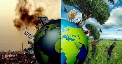 Ayo Selamatkan Bumi!