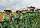 Kinerja Sunpride Tambah Segar di Tengah Pandemic