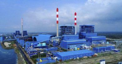 Biomassa Solusi Kurangi PLTU Batubara